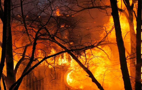 Picture of a home and trees burning in a fire